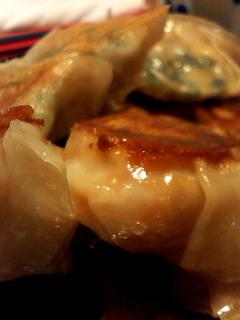 2010.5野菜餃子①
