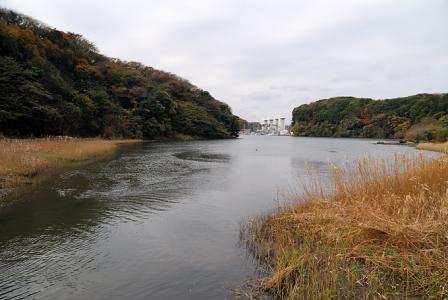 小網代湾の風景