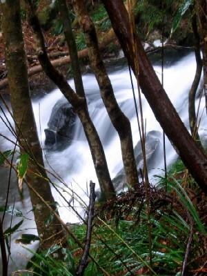 上君田の滝下滝
