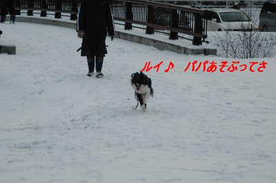DSC_1697.jpg
