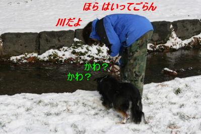 IMG_6504.jpg