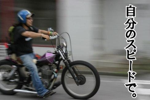2009012102.jpg