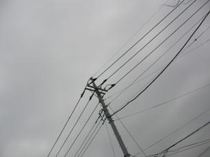 20090309a002.jpg