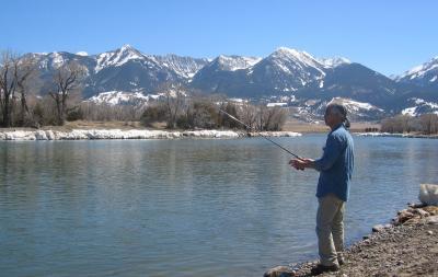 fishing YSR 3
