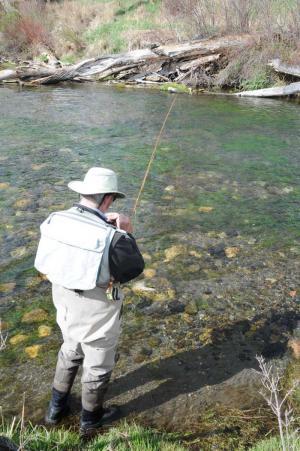 fishing at spring creek 1
