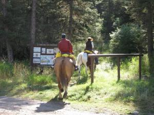 horse back riding tour 4