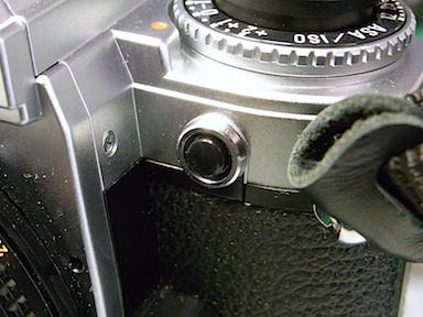 MiyaIMG20110419_FG_010.jpg