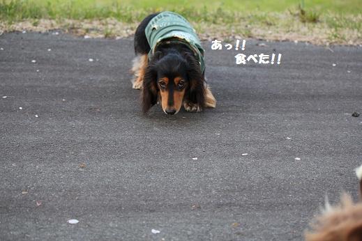 IMG_8789.jpg