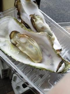 蒸し牡蠣-3