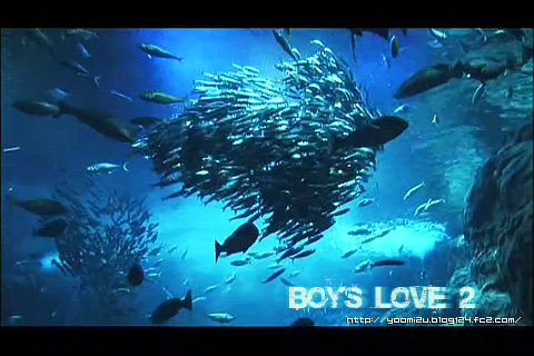 boys love 2-小谷嘉一.菅野篤海 .rmvb_000176509