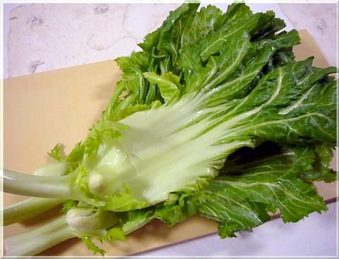 コブ高菜1