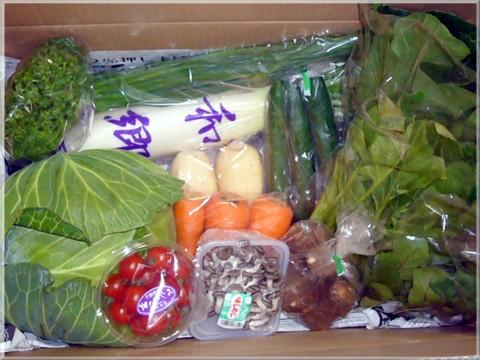 和郷園の野菜セット