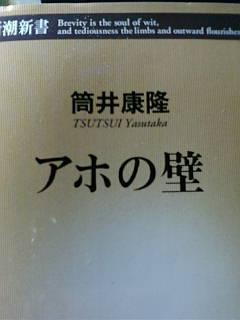 20100328100255.jpg