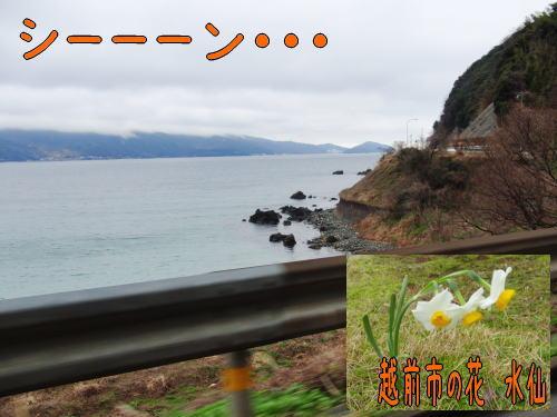 201036-1.jpg