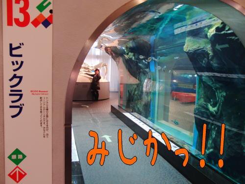 201036-8.jpg