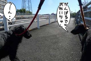 geko持って車取りに行くの巻(7)