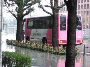 2008_0320田崎 002