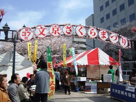 2008_0329茗荷谷花見 003