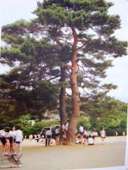 2008_0809金沢 230-s