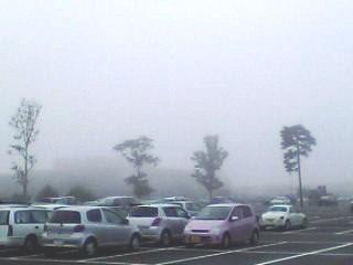 TOHO_fog.jpg