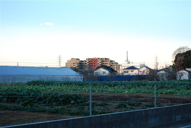 blog_image_0105.jpg