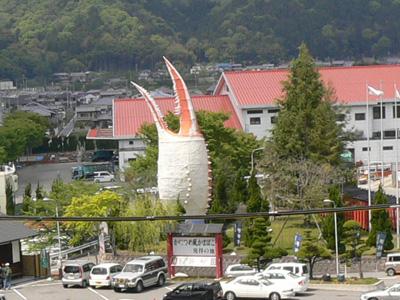 千年藤と芝桜7
