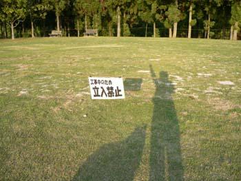 現在の芝生1