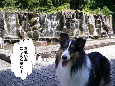 水分かれ公園4