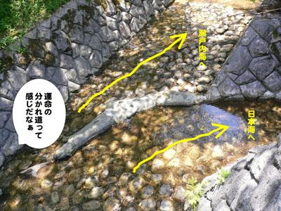 水分かれ公園3