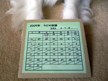 2009ラジオ体操3
