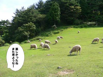 六甲山牧場32