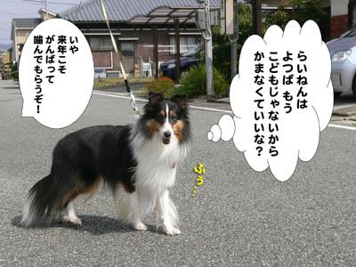 獅子舞2009-8