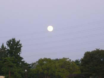 中秋の名月の翌日1