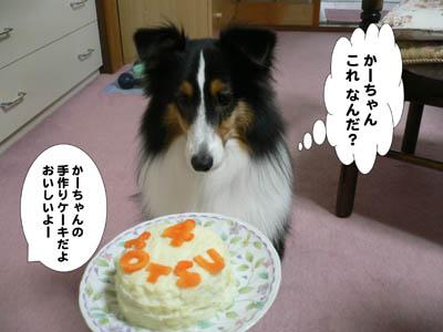 ザンネンなケーキ2