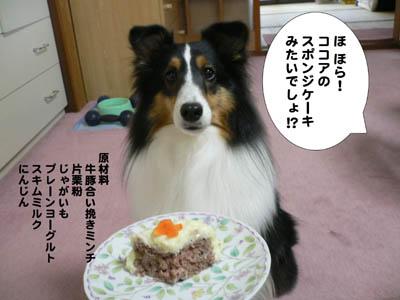 ザンネンなケーキ4