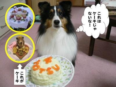 ザンネンなケーキ3