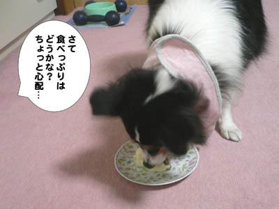 ザンネンなケーキ7