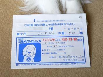 2狂犬病予防接種