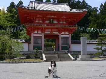 1播州清水寺