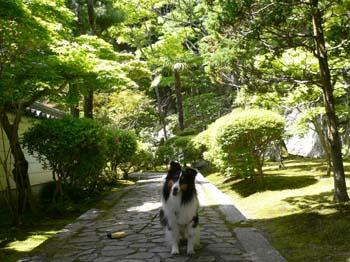 12播州清水寺