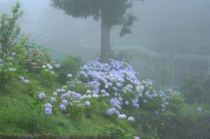 2007.07.23 箱根ユネッサンにて夏休み 016_1
