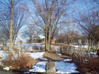 H230207冬の公園