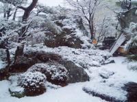 H230307春の淡雪
