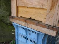 H240402ミツバチの巣門