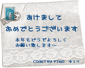 pr31_1.png