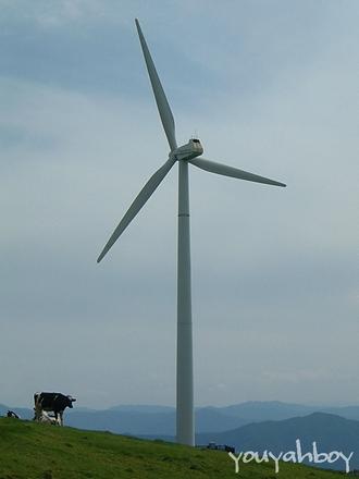 巨大な白い風車