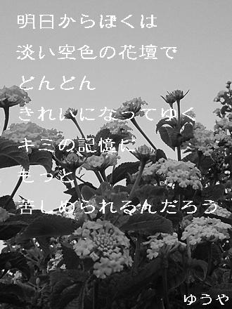 水色の花壇