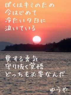冷たい夕日