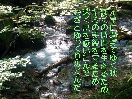 『ゆっくり歩く秋の詩』 小田深山渓谷上流