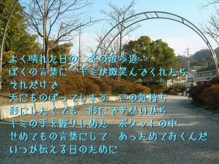 【冬の散歩道】